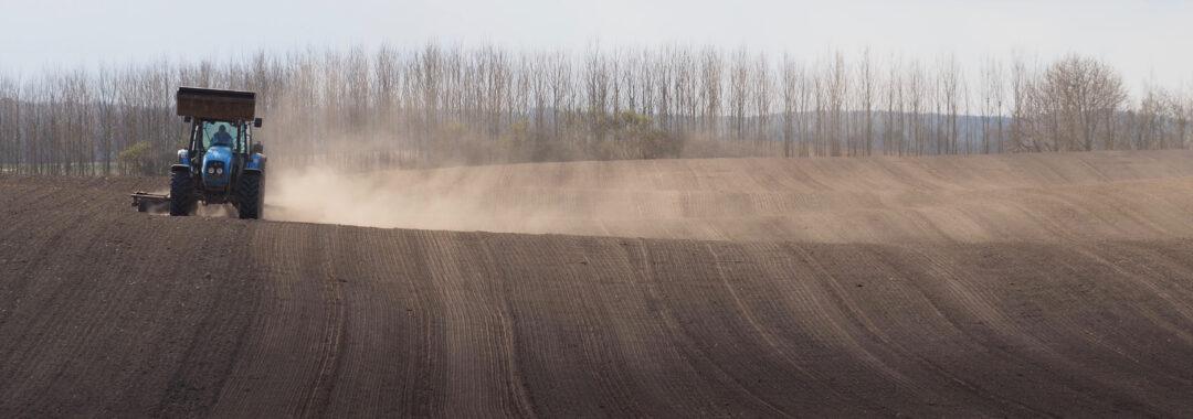 Det våde får, Tolykkegård, bryggeri og økologisk landbrug