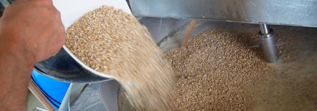 mæskning af øl på det våde får - et gårdbryggeri